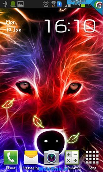 2_wolf.jpg